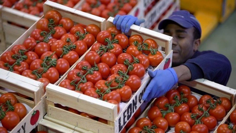 México y EU firman nuevo acuerdo por tomate